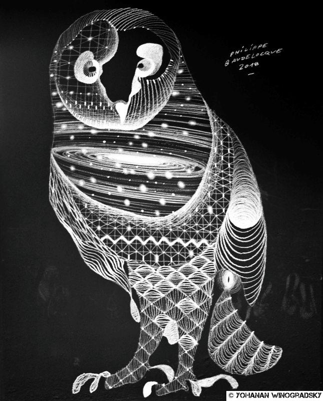 street art par philippe baudelocque à chatelet les halles chouette
